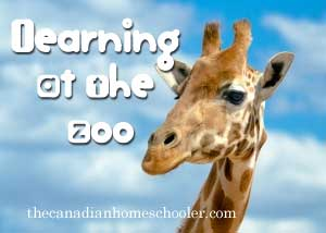 learningatthezoo