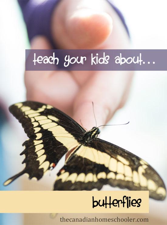 Teach your Kids About Butterflies