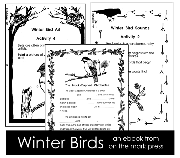 Winter Birds Lesson Plans