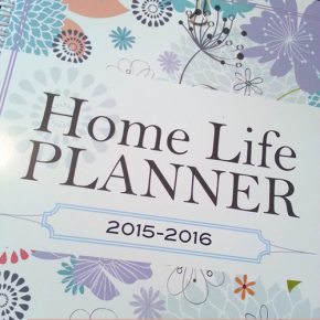 Plum Cheeky Solutions - a planner for your home and life.