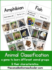animalclassificationgamesmall