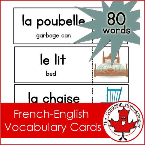 French Vocab Cards
