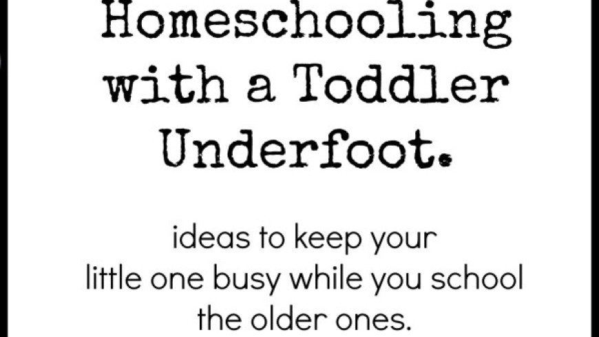 Trying to Homeschool with a Toddler