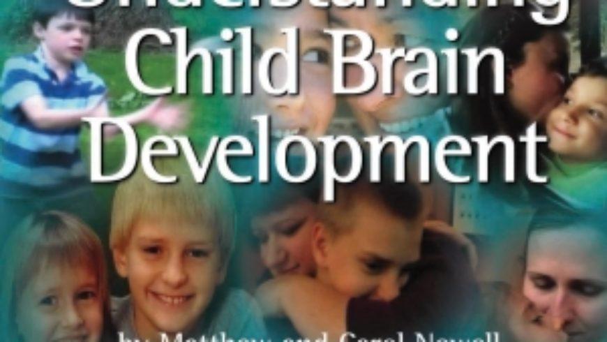 Understanding Brain Development DVD Review