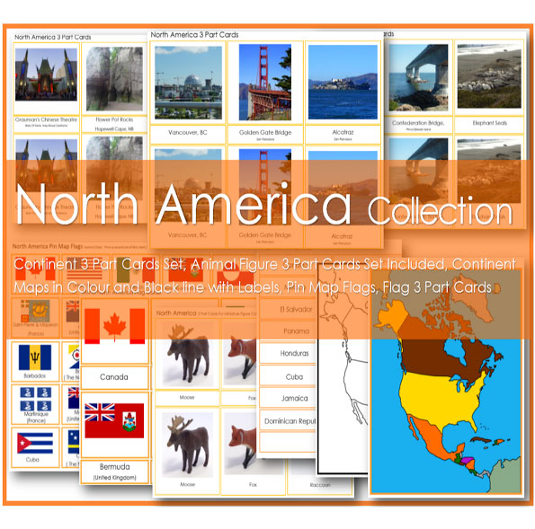 North American Continent Collection