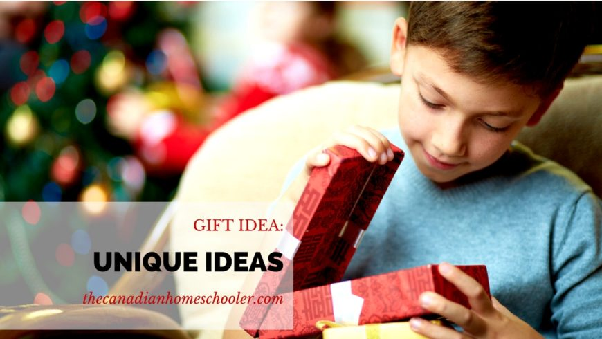 Gift Ideas for Homeschoolers: Other Great Ideas