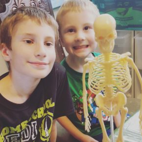 Science Expeditions - Bones