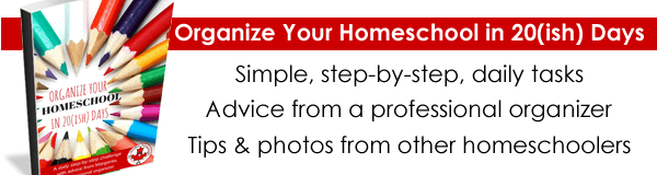 Organize Your Homeschool Ebook Promotion