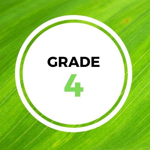 GRADE4_Square